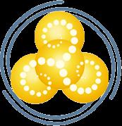 SIRT logo